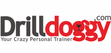 Drilldoggy_Page_New66